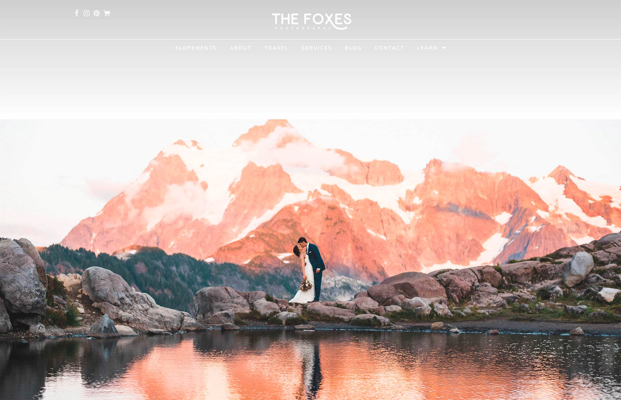 The Foxes
