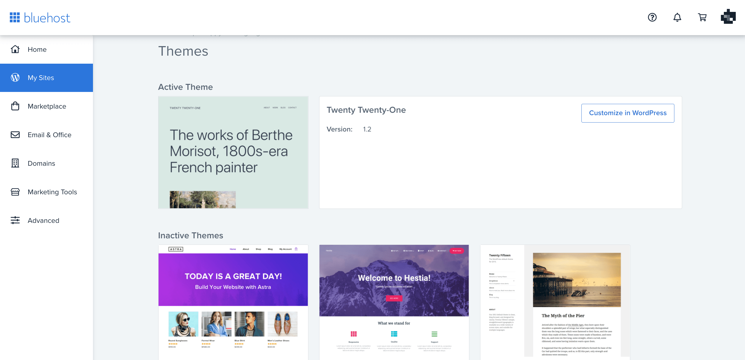 Bluehost themes
